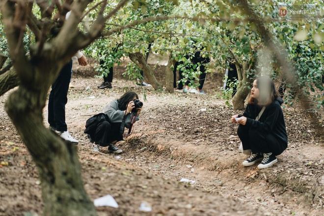 Khám phá vườn táo của trường Đại học rộng nhất Việt Nam, chỉ mất 15k là ăn tẹt ga lại còn được đống ảnh sống ảo - ảnh 11