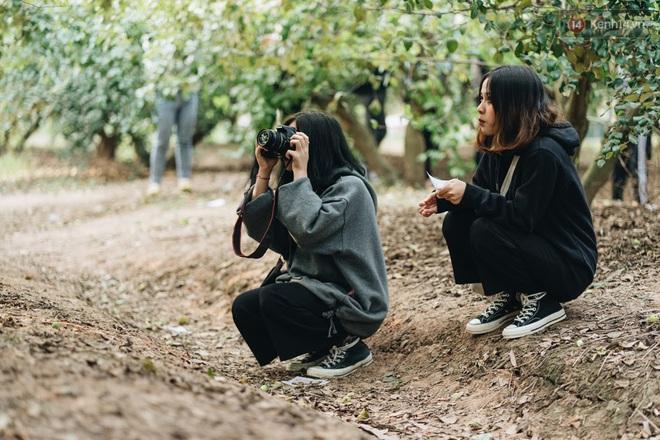 Khám phá vườn táo của trường Đại học rộng nhất Việt Nam, chỉ mất 15k là ăn tẹt ga lại còn được đống ảnh sống ảo - ảnh 12