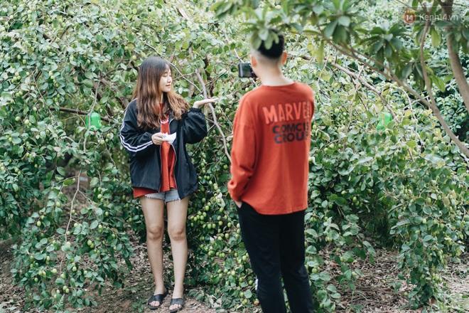 Khám phá vườn táo của trường Đại học rộng nhất Việt Nam, chỉ mất 15k là ăn tẹt ga lại còn được đống ảnh sống ảo - ảnh 1