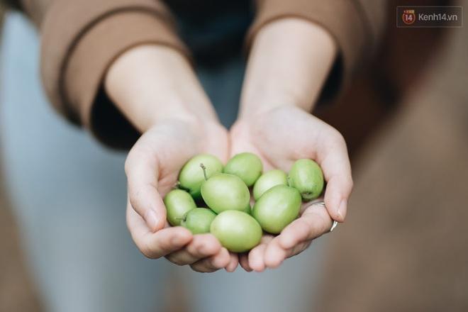 Khám phá vườn táo của trường Đại học rộng nhất Việt Nam, chỉ mất 15k là ăn tẹt ga lại còn được đống ảnh sống ảo - ảnh 5