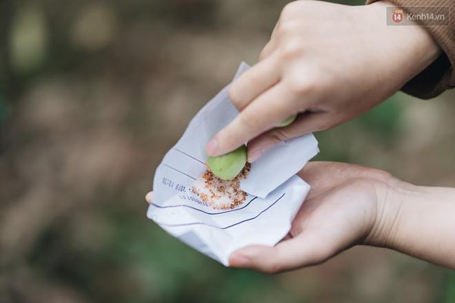 Khám phá vườn táo của trường Đại học rộng nhất Việt Nam, chỉ mất 15k là ăn tẹt ga lại còn được đống ảnh sống ảo - ảnh 7