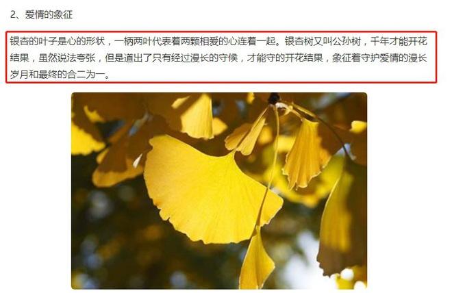 1 tháng sau scandal lộ 3 clip nóng, bài đăng đầu tiên của Lý Tiểu Lộ trên Weibo khiến netizen xôn xao đồn đoán - ảnh 3