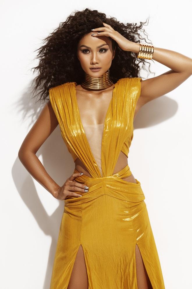 H'Hen Niê đẹp như nữ thần trong bộ ảnh khép lại nhiệm kỳ Hoa hậu Hoàn vũ: 2 năm qua đã quá xuất sắc rồi! - ảnh 5