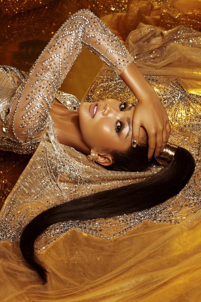 H'Hen Niê đẹp như nữ thần trong bộ ảnh khép lại nhiệm kỳ Hoa hậu Hoàn vũ: 2 năm qua đã quá xuất sắc rồi! - ảnh 7