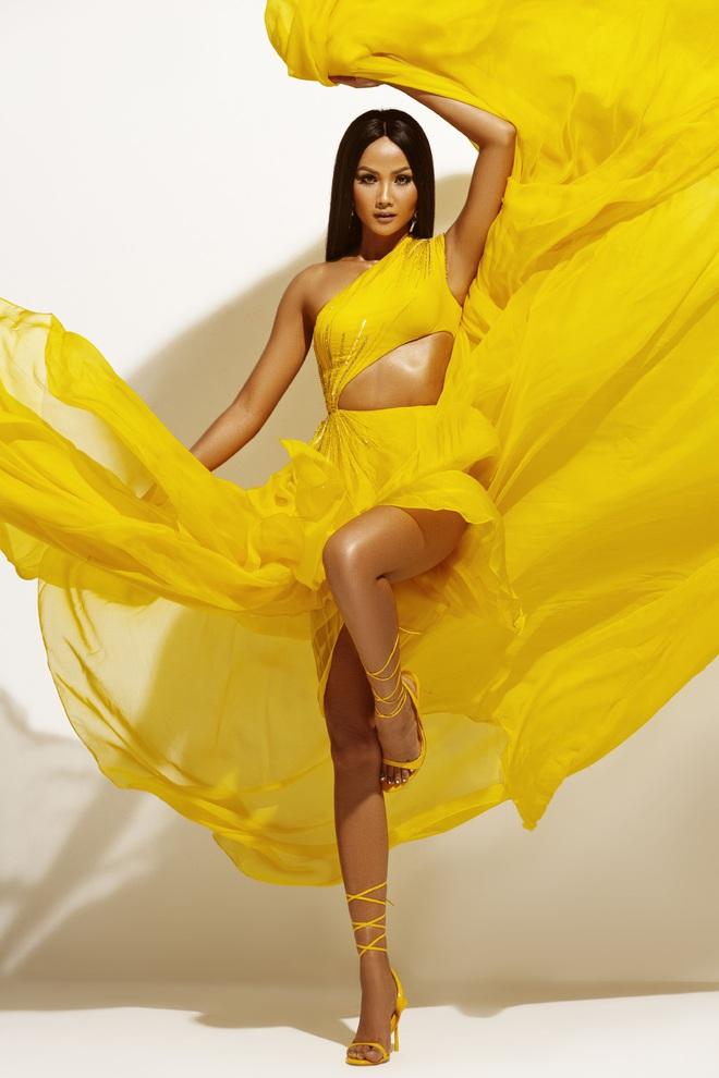 H'Hen Niê đẹp như nữ thần trong bộ ảnh khép lại nhiệm kỳ Hoa hậu Hoàn vũ: 2 năm qua đã quá xuất sắc rồi! - ảnh 10