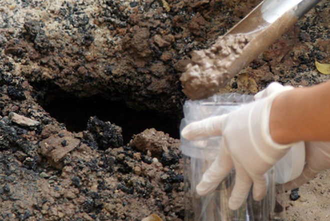Vụ 2 anh em ruột tại Hà Nội tử vong do nhiễm khuẩn Whitmore: Phát hiện vi khuẩn trong mẫu đất - ảnh 1