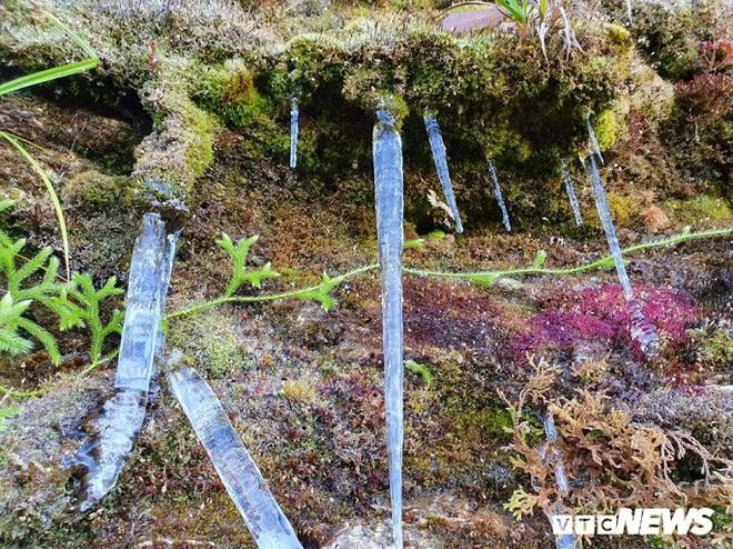 Băng giá phủ trắng đỉnh Chiêu Lầu Thi, du khách nô nức rủ nhau check in - ảnh 2