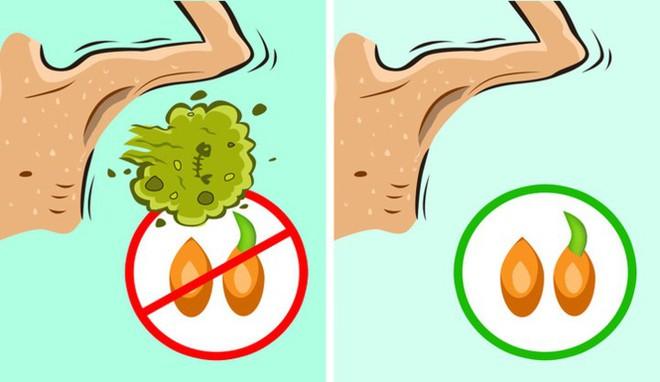 11 nguyên liệu tự nhiên giúp loại bỏ mùi hôi cơ thể - ảnh 5