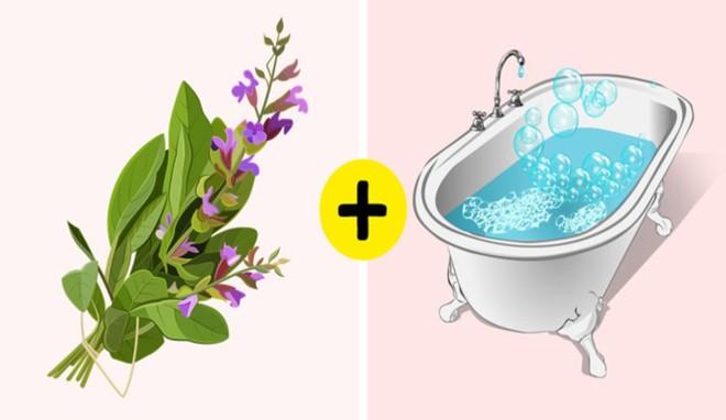 11 nguyên liệu tự nhiên giúp loại bỏ mùi hôi cơ thể - ảnh 7
