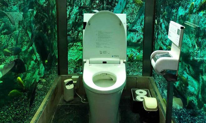 Lạ đời thay quán cafe nọ ở Nhật Bản: Khách hàng quên ăn quên uống vì chăm chăm... ngắm nhà vệ sinh - Ảnh 1.