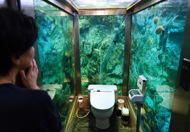 Lạ đời thay quán cafe nọ ở Nhật Bản: Khách hàng quên ăn quên uống vì chăm chăm... ngắm nhà vệ sinh - Ảnh 7.