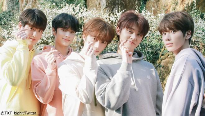 Độ tuổi trung bình của các boygroup Kpop: SHINee, BTS, NU'EST gây bất ngờ vì quá trẻ - ảnh 13