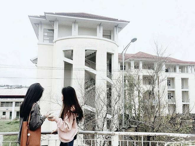 Quên Cao Đẳng Sư Phạm đi, Đà Lạt còn có một ngôi trường sống ảo đẹp chẳng thua Hàn Quốc đây này! - ảnh 21