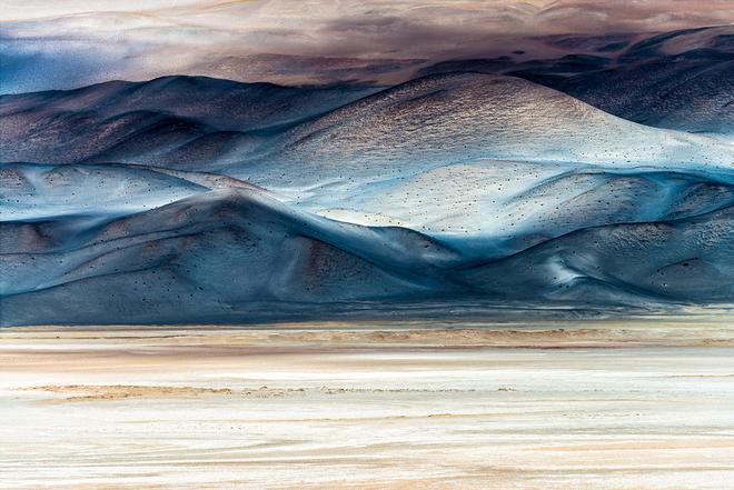 Loạt ảnh thiên nhiên đạt giải thưởng của Viện hàn lâm California: Chứa đựng cuộc sống hoang dã tàn khốc mà cảm động - ảnh 9