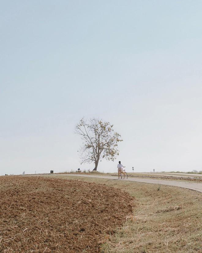 Đã tìm ra toạ độ của trang trại đẹp tựa trời Âu khiến giới trẻ thi nhau đến check-in rần rần - ảnh 10