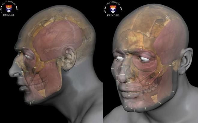 Tái tạo thành công gương mặt nạn nhân của một vụ giết người man rợ từ bộ xương 1400 năm tuổi - ảnh 1