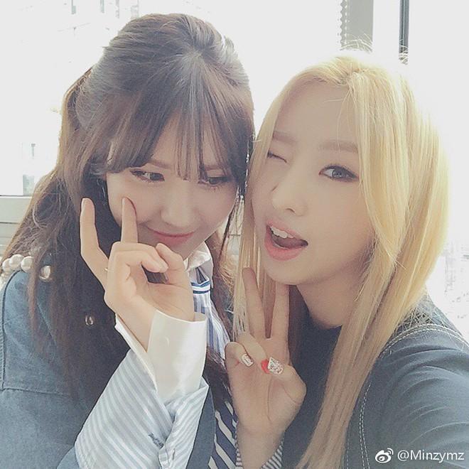Hội fanboy và fangirl Kpop thành công nhất hệ mặt trời: Cuối cùng cũng được trở thành đồng nghiệp với idol! - Ảnh 5.