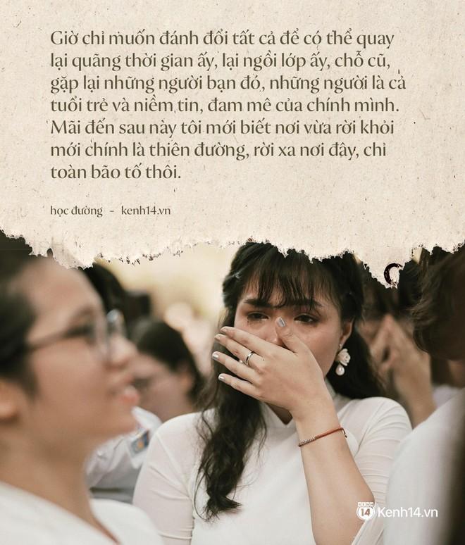 Tại sao học sinh lớp 12 khóc như mưa trong ngày bế giảng nhưng vài năm sau họp lớp không ai đi? - Ảnh 2.