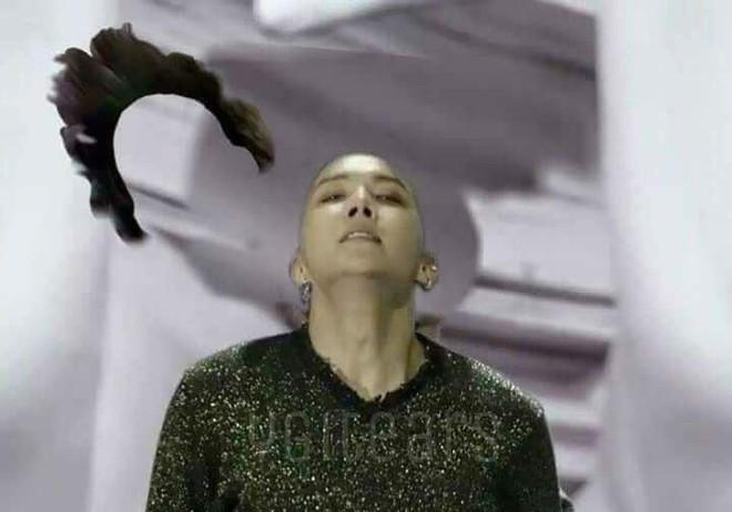 Khi idol Kpop tóc gió thôi bay: Người đẹp lồng lộn, kẻ thành trò cười thiên hạ, riêng em út BLACPINK gây tò mò - ảnh 5