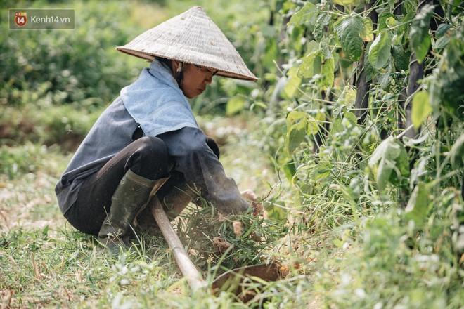 Bà Tân Vê Lốc: Từ người nông dân đến hiện tượng Youtube cán mốc 1 triệu sub chỉ sau 20 ngày - ảnh 10