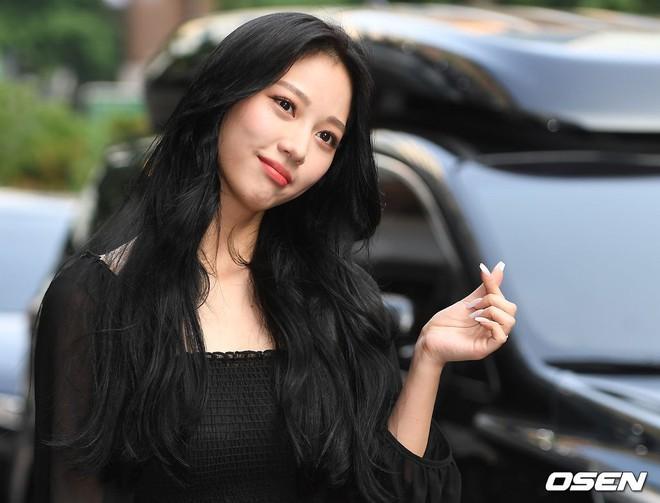 Tiệc mừng công bom tấn Vagabond: Suzy giản dị hết cỡ, xinh xắn nhưng bị nữ phụ vô danh lấn át bên dàn tài tử Hàn - Ảnh 5.