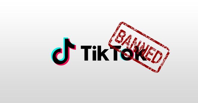 TikTok sắp làm cả smartphone thương hiệu cùng nhà, cài sẵn mọi hàng hot dành cho dân sống ảo - ảnh 3