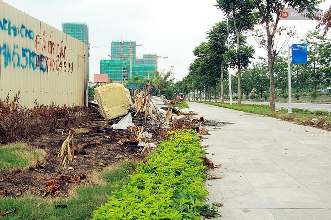 Chùm ảnh: Vừa hoạt động 3 tháng, con đường mang tên nhà tư sản Trịnh Văn Bô đã ngập ngụa rác thải - ảnh 2
