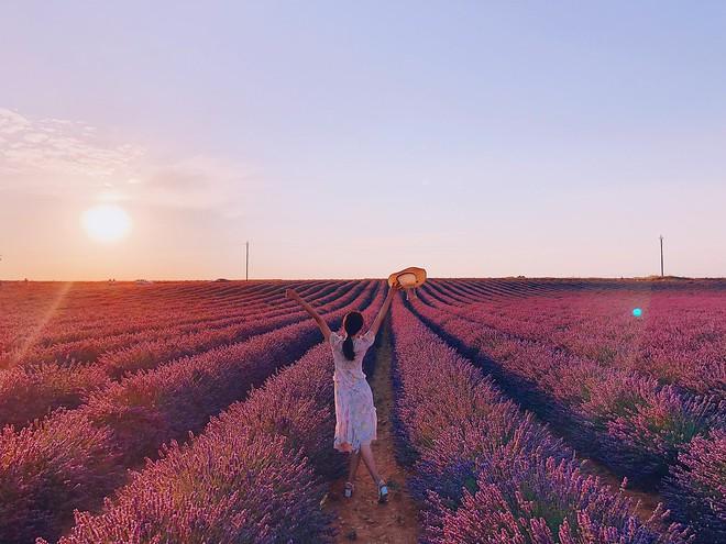 Soi bảng thành tích du lịch siêu to khổng lồ của bà mối quốc dân Hương Giang: Đến travel blogger cũng phải dè chứng vì tần suất quá khủng! - ảnh 10