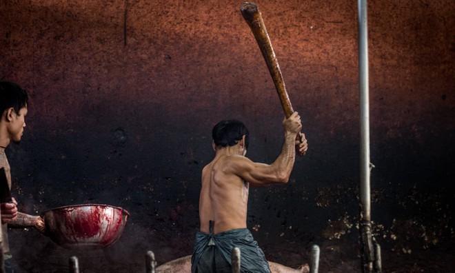 Sự thật tàn khốc đằng sau những lò giết mổ lợn ở Thái Lan với nỗi đau thấu tim can không ai biết - ảnh 3