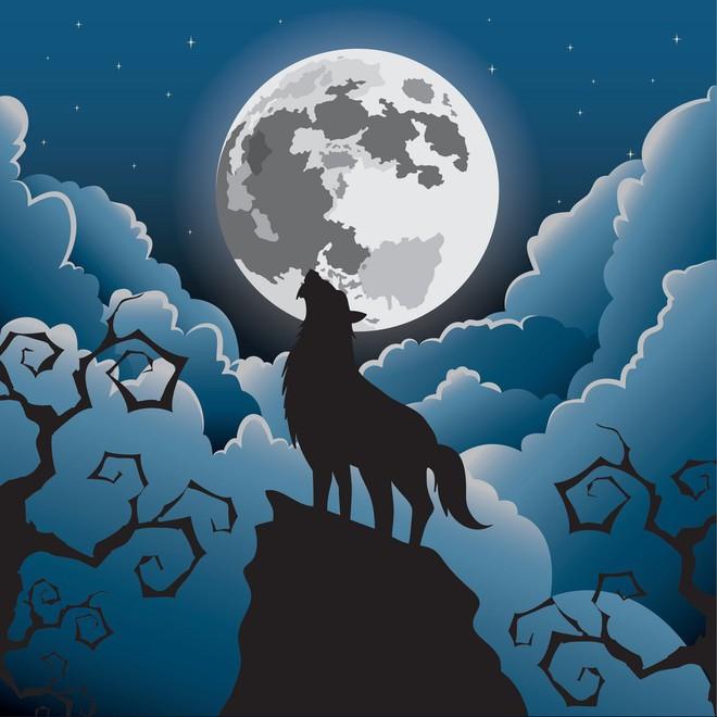 Sói hú dưới trăng: Hiện tượng hư cấu trong phim kinh dị hay câu chuyện có thật? - ảnh 3