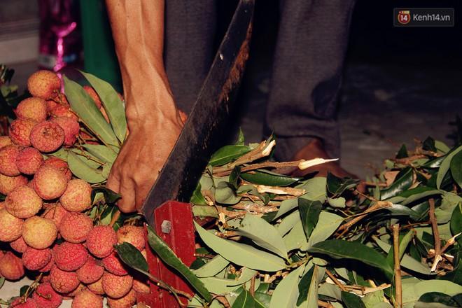 Người dân Bắc Giang dậy từ 3 giờ sáng để bẻ vải, thức xuyên đêm vặt lá cho kịp thời vụ - ảnh 6
