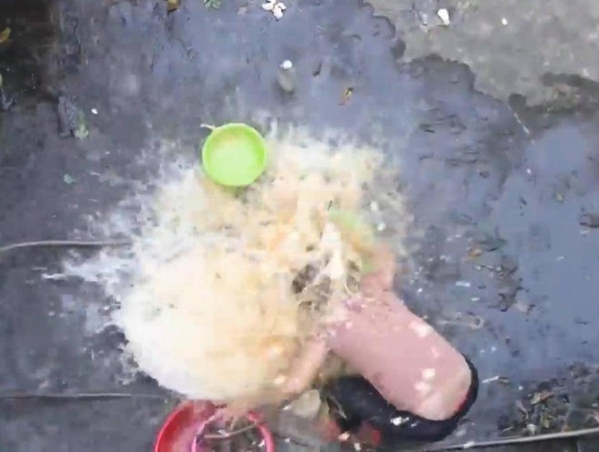 Ăn mừng kênh Youtube 20k subcribers, con trai cưng đổ thau trứng lên đầu mẹ rồi quay clip khoe như chiến tích - ảnh 3
