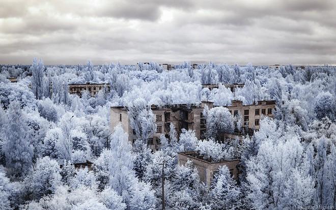 Từ vùng đất ma không ai dám bén mảng, nhà máy điện hạt nhân Chernobyl bỗng hóa xứ sở thần tiên đẹp lịm tim qua lăng kính của nhiếp ảnh gia - ảnh 18