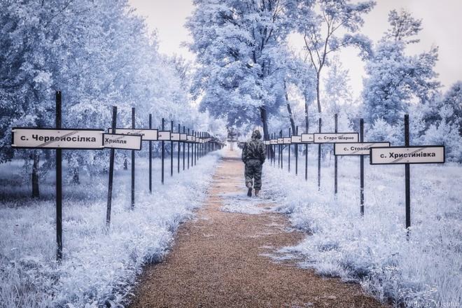Từ vùng đất ma không ai dám bén mảng, nhà máy điện hạt nhân Chernobyl bỗng hóa xứ sở thần tiên đẹp lịm tim qua lăng kính của nhiếp ảnh gia - ảnh 22