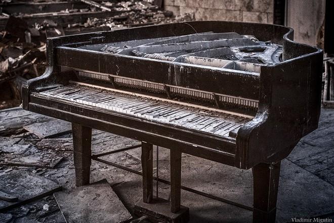 Từ vùng đất ma không ai dám bén mảng, nhà máy điện hạt nhân Chernobyl bỗng hóa xứ sở thần tiên đẹp lịm tim qua lăng kính của nhiếp ảnh gia - ảnh 30
