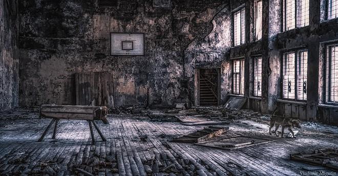Từ vùng đất ma không ai dám bén mảng, nhà máy điện hạt nhân Chernobyl bỗng hóa xứ sở thần tiên đẹp lịm tim qua lăng kính của nhiếp ảnh gia - ảnh 31