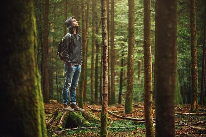 Muốn khoẻ như vâm thì hãy dành ít nhất 2 giờ một tuần để hoà mình vào thiên nhiên - Ảnh 2.