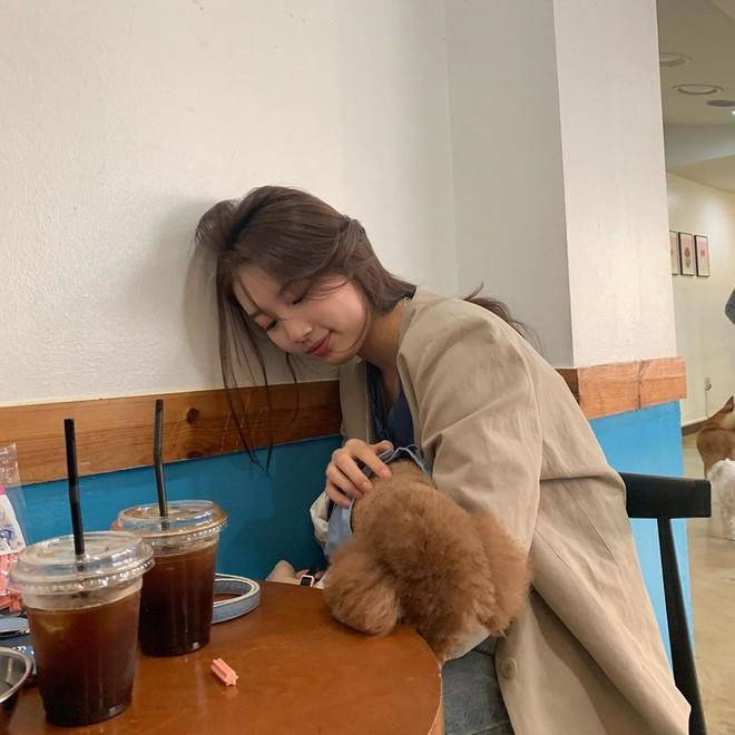 Sao Kpop chuyên chụp hình lỗi và tạo dáng hiểu chết liền khi đi du lịch chẳng ai thắng được tình đầu quốc dân Suzy - ảnh 19