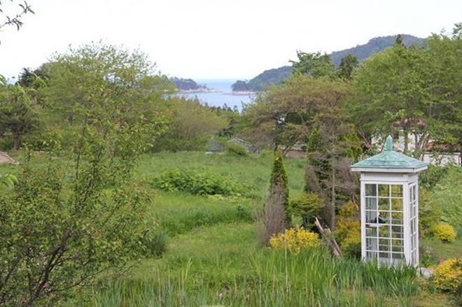 Câu chuyện về bốt điện thoại kỳ lạ nhất quả đất ở Nhật Bản: Nằm chơ vơ giữa vùng đất hoang vắng, là nơi để người sống liên lạc với người đã chết - ảnh 9