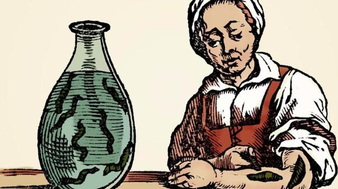 Ai mà ngờ chiếc bình gốm tinh tế này lại được dùng để nuôi loài vật kinh dị nhưng từng khiến cả nhân loại phát cuồng - ảnh 7