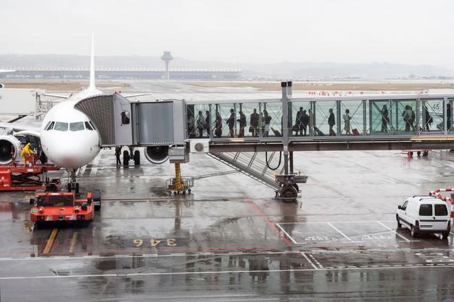Cảnh sát phát hiện cảnh tượng kinh hoàng xác ướp thai nhi trong nhà vệ sinh máy bay, khiến các nhà chức trách đau đầu tìm lời giải - ảnh 2