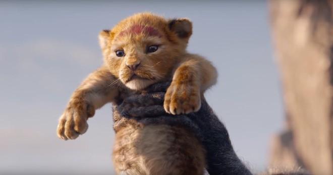 """Hóa ra cái kết thực của The Lion King không hề """"tươi sáng"""": Sao đen tối đậm phong cách vũ trụ DC vậy? - Ảnh 1."""