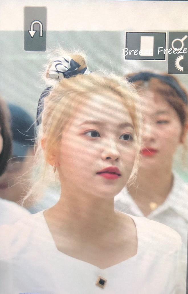 Red Velvet đổi tóc cả loạt, ai cũng xinh lên bội phần nhưng bất ngờ nhất là Irene - ảnh 15