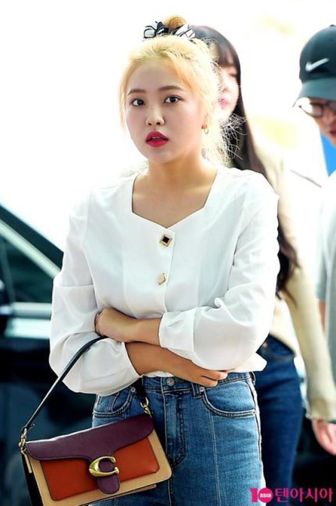 Red Velvet đổi tóc cả loạt, ai cũng xinh lên bội phần nhưng bất ngờ nhất là Irene - ảnh 16