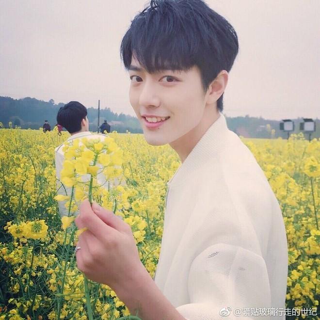 Vừa nghe Cá Mực Dương Tử có phim mới, netizen chỉ lo cho cái mũi của trai đẹp Tiêu Chiến là sao? - Ảnh 9.
