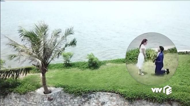 Đáng ra phải là cảnh lãng mạn nhất tập cuối Về Nhà Đi Con thì Vũ lại ném ô xả rác xuống biển, quỳ cả 2 chân cầu hôn Thư - Ảnh 5.