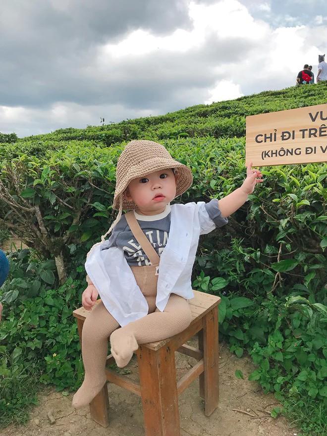Check-in toàn những điểm hot ở Đà Lạt nhưng biểu cảm ngơ ngác của em bé này mới chính là điều khiến dân mạng thích thú - ảnh 1