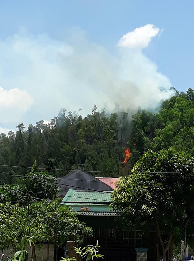 Cháy rừng ở Nghệ An nghi do dân đốt vàng mã Rằm tháng 7 - ảnh 3