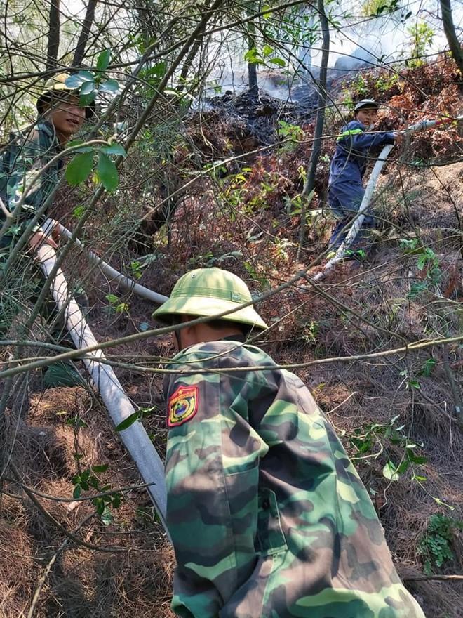 Cháy rừng ở Nghệ An nghi do dân đốt vàng mã Rằm tháng 7 - ảnh 5