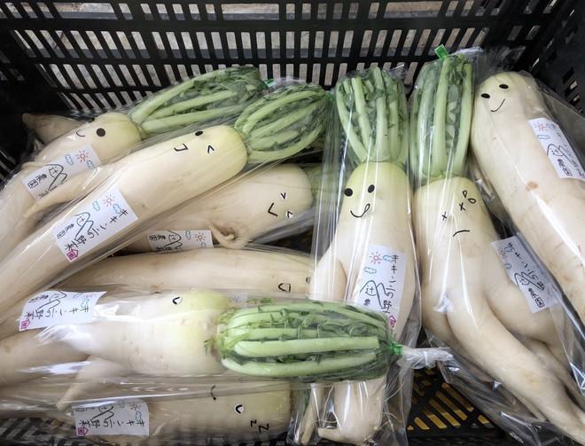 Trước nguy cơ bị vứt bỏ, loạt củ cải trắng xấu xí đã được nông dân Nhật Bản giải cứu nhờ bao bì cực thú vị - ảnh 2